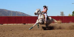 Postar imagem Importância do Mercado de Apostas para o Desenvolvimento do Horseball rapariga a cavalo 300x152 - Postar-imagem-Importância-do-Mercado-de-Apostas-para-o-Desenvolvimento-do-Horseball-rapariga-a-cavalo