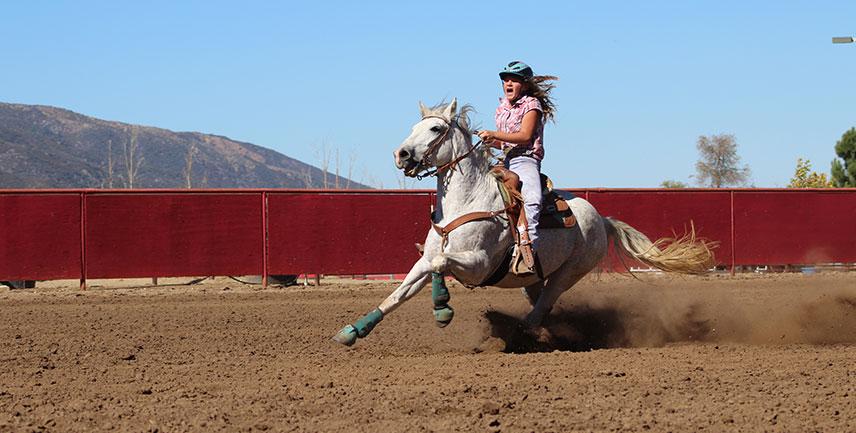 Postar imagem Importância do Mercado de Apostas para o Desenvolvimento do Horseball rapariga a cavalo - Importância do Mercado de Apostas para o Desenvolvimento do Horseball